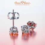 Robert's 4 Prong Basket Earrings ordered on 12/24 @ 11 a.m!