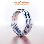 Janet's Double Dream Band