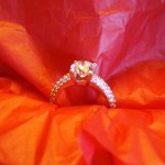 The Ring on Red Tissue
