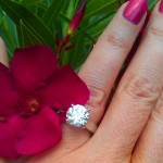 Dalia's Hand Shot with Flower - Top View