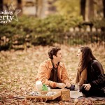 The Picnic After the Proposal