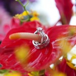 "Magnificent ""Flower"" Picture of the Brian Gavin Custom Rings"