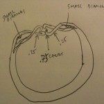 Ian's Hand Sketch of how he Envisioned his Brian Gavin Ring