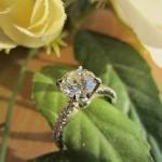 Brian Gavin's Canadian Customer Thrilled with his Novela  Diamond Engagement Ring and Martini Earrings…