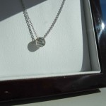 Carolyn's Picture of her Barbara Pendant in the BGD Pendant Box