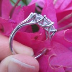 Customer Thrilled with her Platinum 3 Stone Split Shank Trellis Princess Cut Diamond Reset by Brian Gavin…