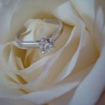 Ashleigh's Flower Shot of her Brian Gavin Ring
