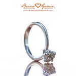 The Flowing Lines of the La Fleur Solitaire by Brian Gavin