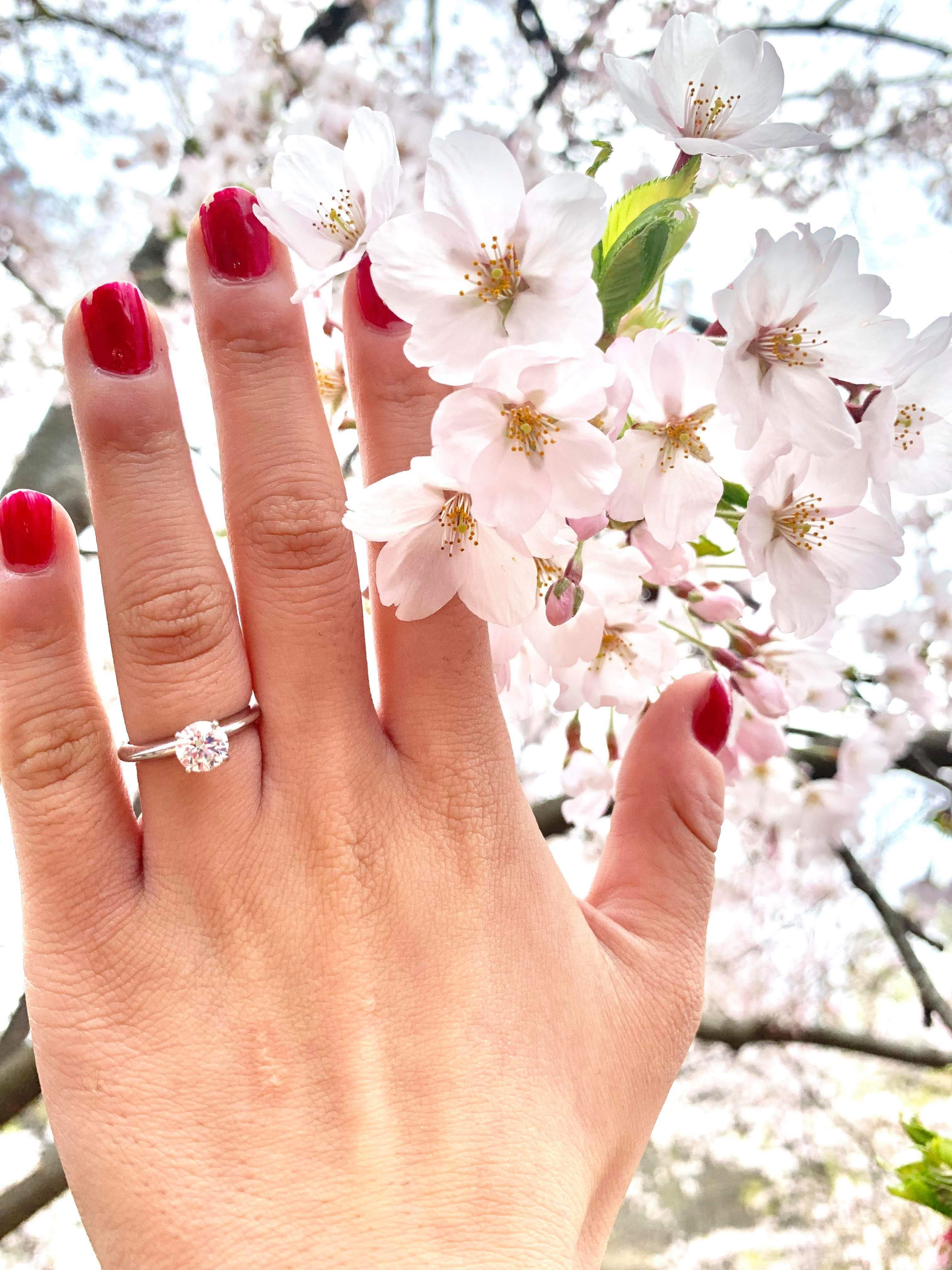 April Showers Bring Forth May Flowers - A May Proposal