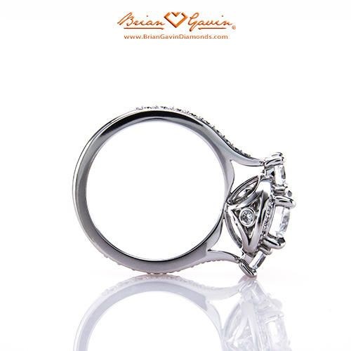 Venus 18K White Gold