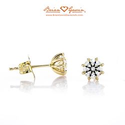 Eight Prong Studs 14K Yellow Gold