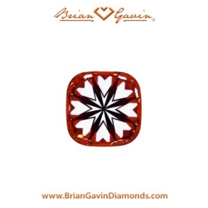 signature cushion hearts and arrows vs princess cut diamond